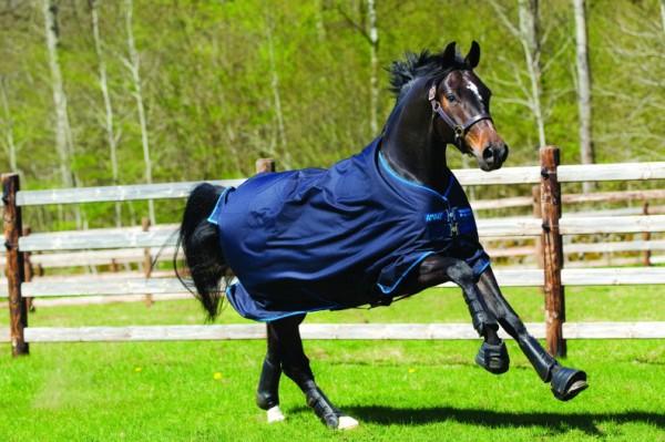 Horseware Amigo Bravo 12 100g linerkompatibel in 125 cm Ausverkauf