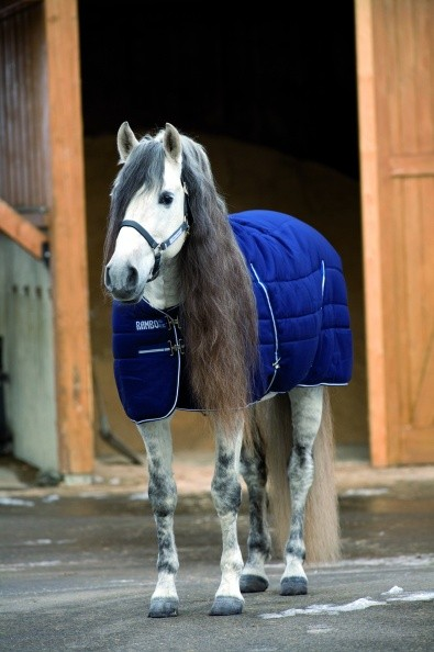 RAMBO Stable Rug medium 200g oder heavy 400g