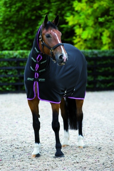 Horseware Amigo All in One Jersey Cooler mit Halsteil