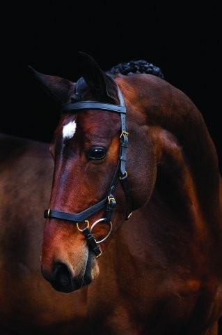 Horseware Rambo Micklem Multibridle Professional, New Style