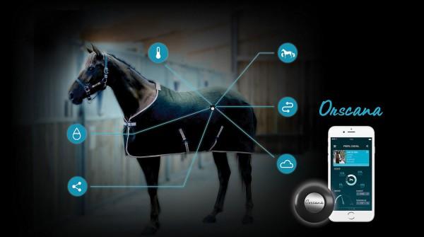 Orscana Pferdedecken-Sensor - so wissen Sie immer, ob Ihr Pferd richtig eingedeckt ist