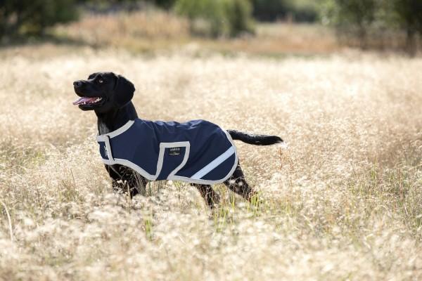 Horseware Amigo Waterproof Dog Rug (Rpistop) 100g