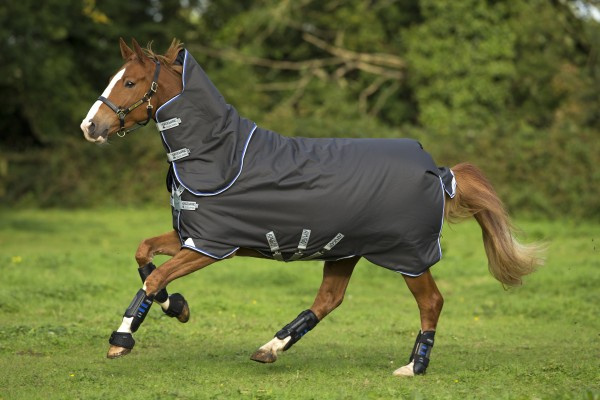 Horseware Amigo Bravo 12 Plus medium Disc mit Halsteil