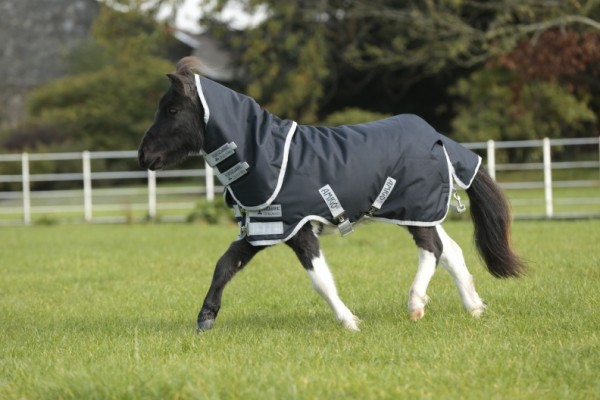 Horseware Amigo Hero 6 Petite Plus Turnout medium 200g