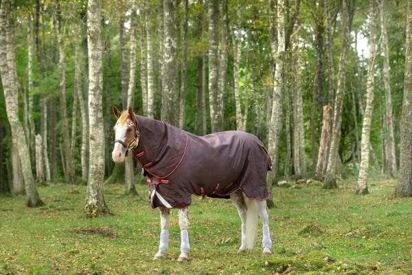 Horseware Amigo Bravo 12 PLUS 100g (mit Halsteil) Disc-Front 2 Farben