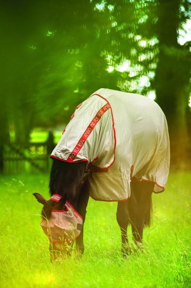 Horseware Mio Flymask ohne Ohren