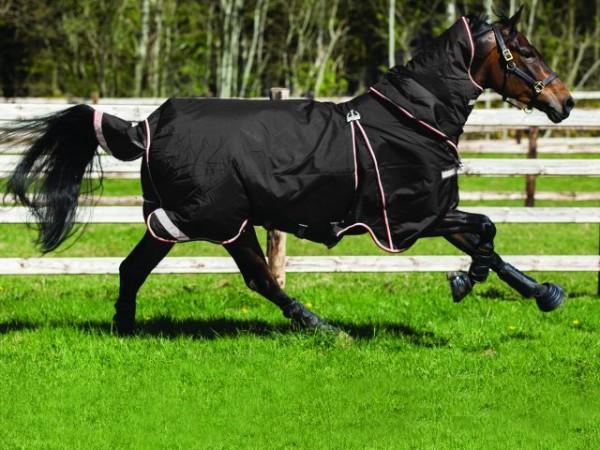 HORSEWARE RAMBO OPTIMO Turnout Weidedecke - die eine für ALLE Tage