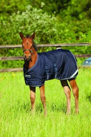 Horseware Amigo Foal Rug 200g - Fohlendecke , die mitwächst