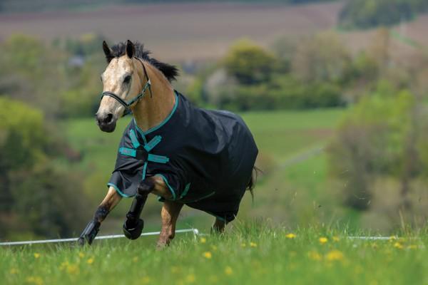 Horseware Amigo Hero 900D Lite Disc - neu